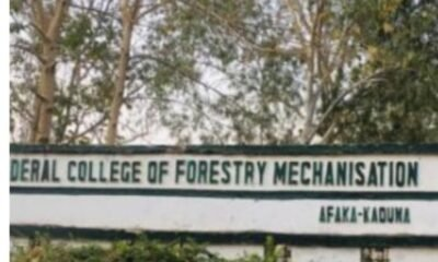 Gunmen have reportedly abducted students of the Federal College of Forestry Mechanism in Mando area of ​​Kaduna